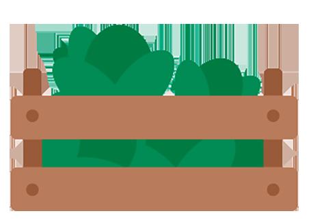 Comercialización de productos agrícolas