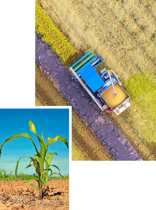Veneinnova - Queremos ser tu proveedor agrícola